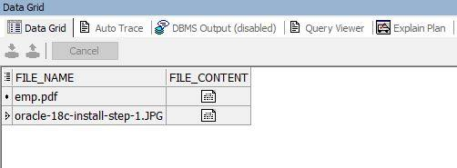 insert a file in Oracle database. A file can be a PDF, Image, etc.