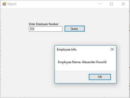 Connect to Oracle Database Using VB.NET 2017