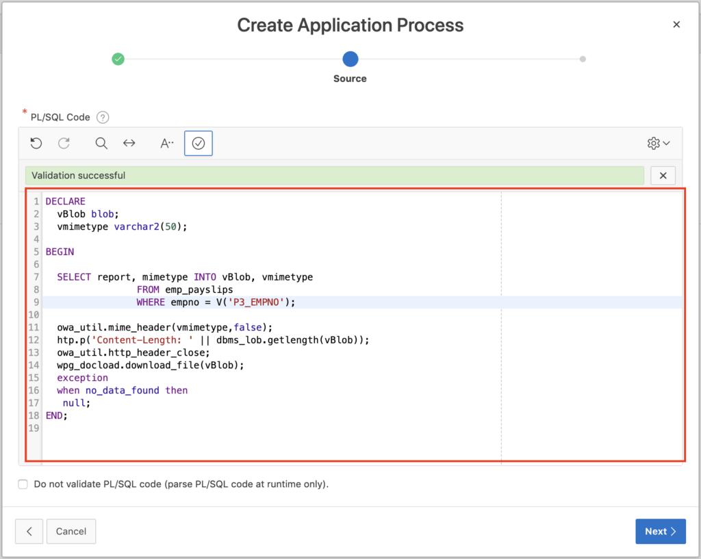 PL/SQL code application process.