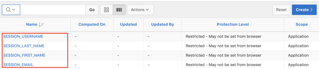 Oracle Apex application items.